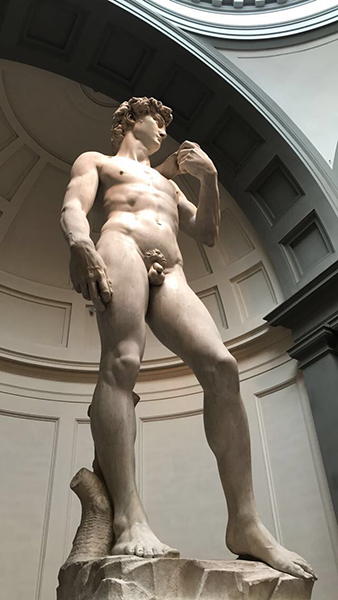 A close up picture of Michelangelo's Marble statue of David, before his battle with Goliath.