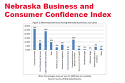June Surveys: Business Confidence Surges in Nebraska